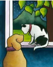 dog - cat